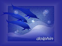 sorry!Dolphin