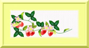 Strawberry_pink_2