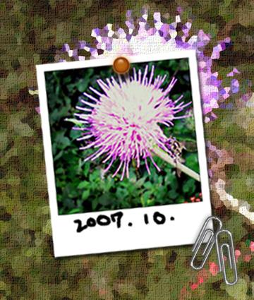 2007_10_3