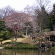 茨城県 八坂公園①